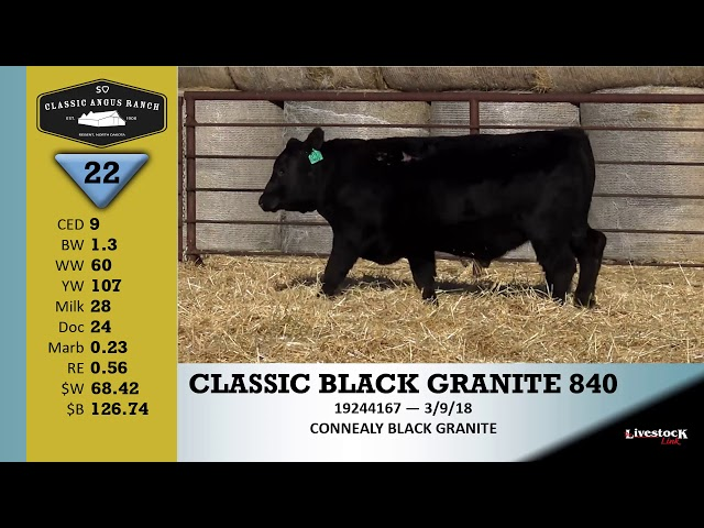 Classic Angus Ranch Lot 22