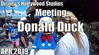 Meet The Stars Episode 6 |  Donald Duck | Disney's Hollywood Studio| OurThemeParkLife