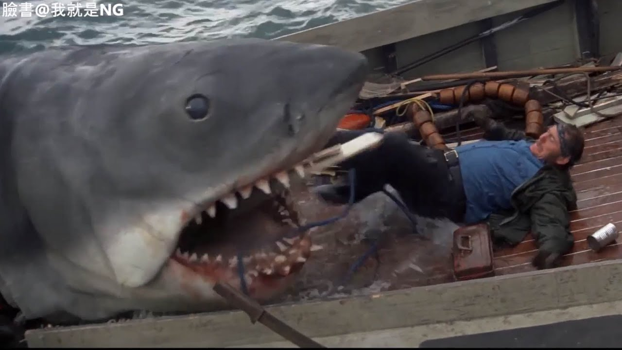 【NG】來介紹一部這隻鯊魚一定是裝了超級電池的電影《大白鯊 Jaws》