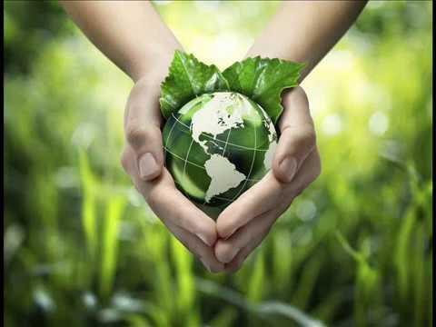 Environmental Degradation Facts