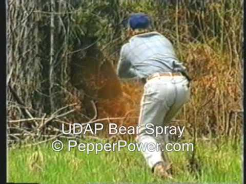 Bear Sprayed with UDAP Pepper Power Bear Deterrent