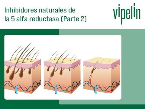 otros-inhibidores-naturales-de-la-5-alfa-reductasa-vipelin
