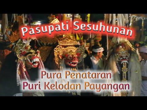 Pasupati sesuhunan Pura Penataran, Semeton Puri Kelodan Payangan, #ubudinsider