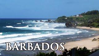 Barbados: Karibik - Reisebericht