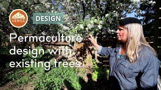 Permaculture Garden Design Around Existing Mature Trees