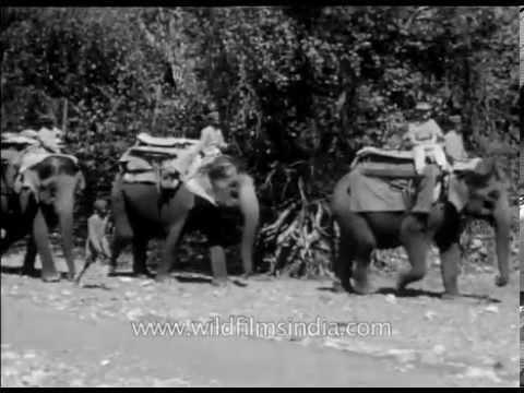 Old shikar video from the days of the British Raj in India