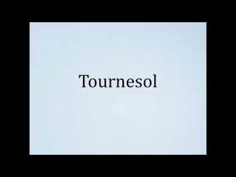 How to pronounce Tournesol