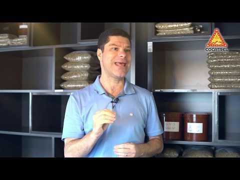 Direct Trade, o departamento da Cocatrel para exportação de cafés especiais