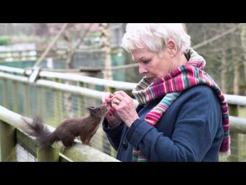 Dame Judi Dench meets Surrey Life magazine