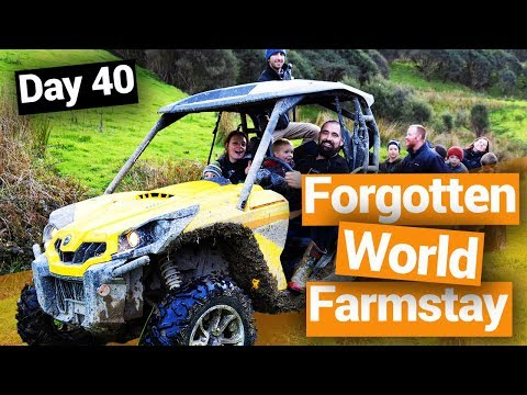 Forgotten World Highway Farmstay - New Zealand's Biggest Gap Year – Backpacker Guide New Zealand