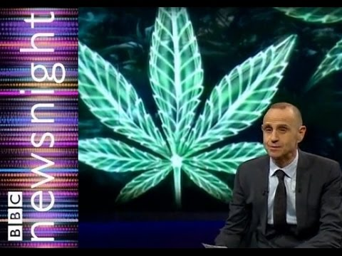 Can Cannabis oil reduce cancerous tumors?  - Newsnight