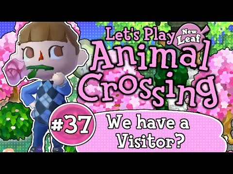 Let's Play: Animal Crossing New Leaf (Ep 37)