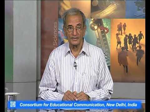 R. K. Narayan : Novelist