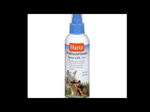 DOG SHAMPOO WITH HYDROCORTISONE