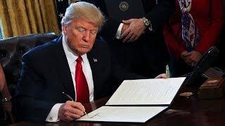 The Economic Consequences of Mr. Trump