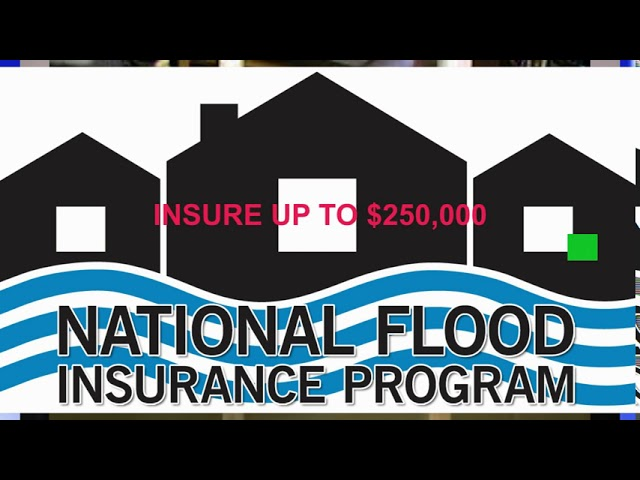 Do You Have Flood or Water Backup & Sewer Insurance?