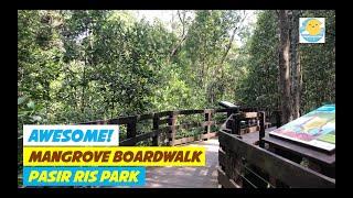 PASIR RIS MANGROVE BOARDWALK II PASIR RIS PARK    SINGAPORE    WHERE TO GO IN SINGAPORE