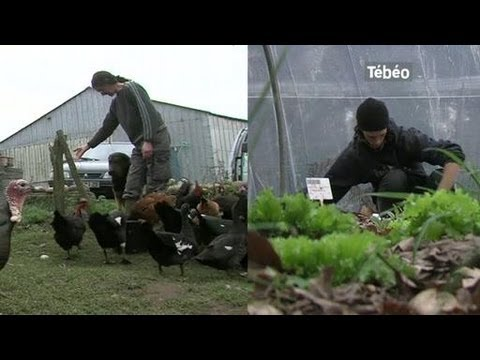 Obtenir le label Agriculture Biologique (Brest)