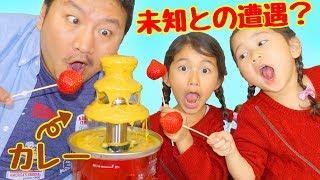 不思議な食べ合わせ【番外編】カレーって何でも合う説を検証する!!himawari-CH