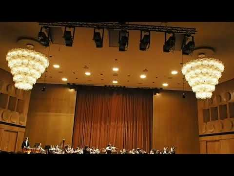 Mendelssohn Concerto clip , Leipzig Gewandhaus Leonid Sushansky violin Anima Musicae Orchestra