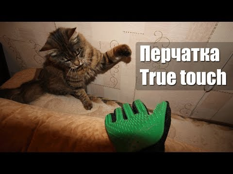 Перчатка для шерсти кошек и собак. Распаковка и первые впечатления!