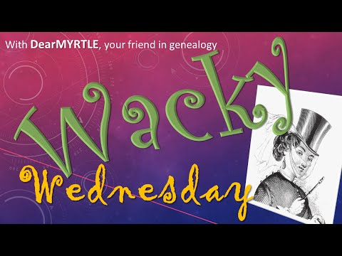 WACKY Wednesday - Adobe Spark Page