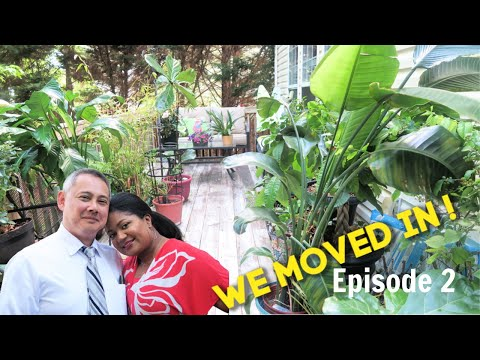 moving-in-during-the-worst-time-!-episode-2-#househunting-#movingvlog-#housetour-kenton-&-habiba