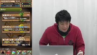 【パズドラ】幽遊白書ガチャ浦飯幽助狙い