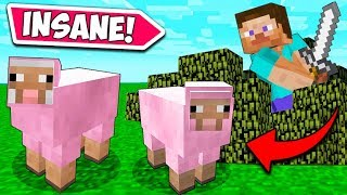*RARE* PINK SHEEP HUNT!! - Minecraft Funny Moments and Fails! #1