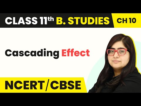 Cascading Effect | Internal Trade | Business Studies | Class 11 | In Hindi | Magnet Brains