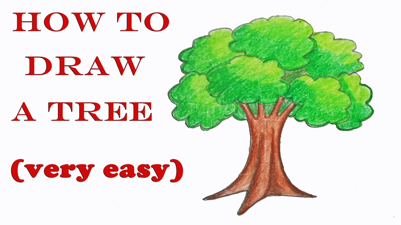 how to draw a tree step by step very easy youtube