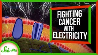 How the Electricity in Our Bodies Could Fight Cancer