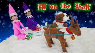 Elf on the Shelf! Reindeer vs Dog Sledding Pulling Sled in Snow! Day 15