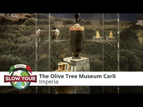 Imperia: The Olive Tree Museum Carli | Italia Slow Tour