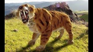 Саблезубый Тигр  / Доисторические животные /
