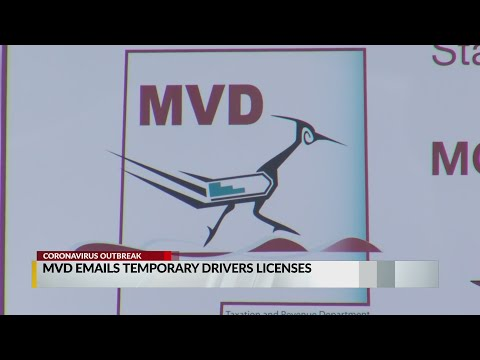 MVD Emails  Temporary Drivers Licenses