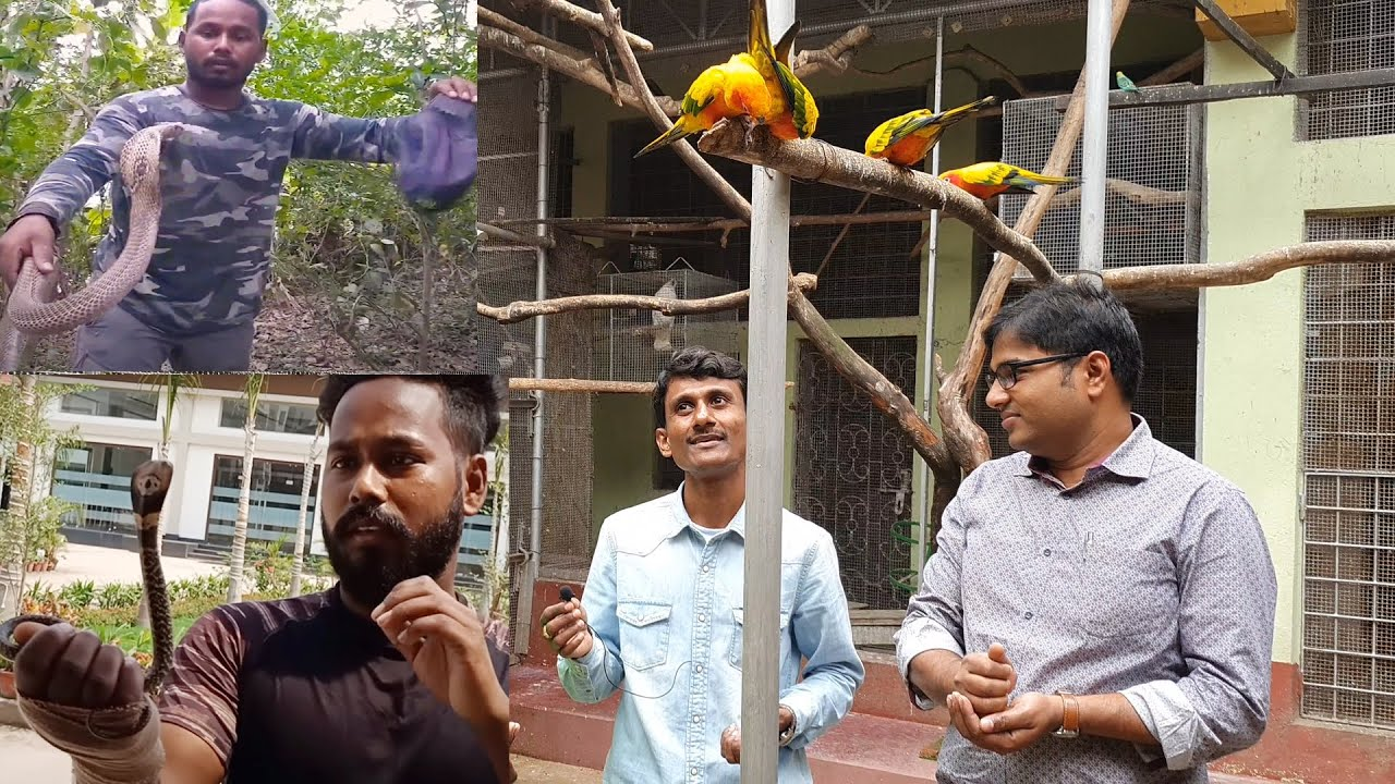 Snake Can't Hear : Know more About Snakes / Aariyom Foundation  and Parrot Dipankar.