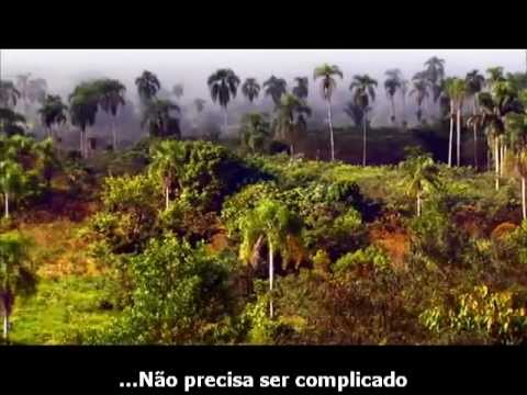 The Nature Conservancy comercial dublado - Jason Mraz - I'm Yours Legendado PTBR