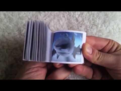 SHEDD AQUARIUM FLIP BOOK
