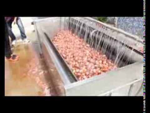 Onion Peeling Dicing Slicing Machine Potato Peeling