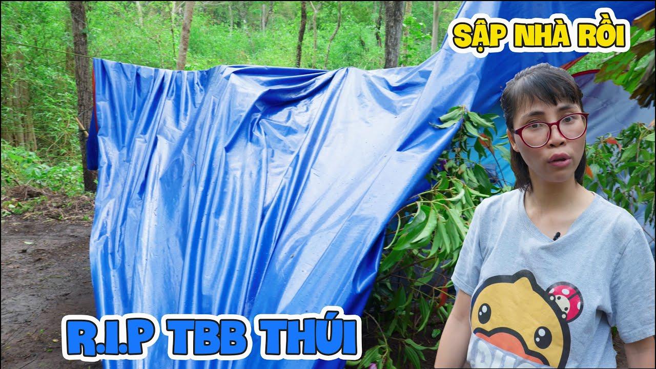 Nhà Anh TBB Thúi Bị Sập, Em Rùa Bỏ Đi Mất