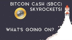 BITCOIN CASH SKYROCKETS | What's going on?