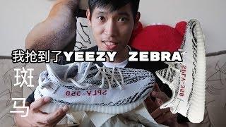 [球鞋生活]我抢到了Adidas Yeezy 350 Zebra白色斑马 哈哈!|义宁TV