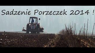 Sadzenie Czarnej Porzeczki 2014 !