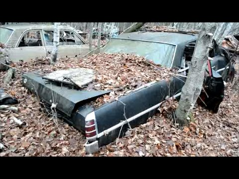 60S CANADIAN PONTIACS & CHEVROLETS IN JUNKYARD