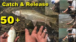 Catch and release 50 Tarbella dam Fishing 2021 A msg for all Anglers Mangla Dam Fishing 2021