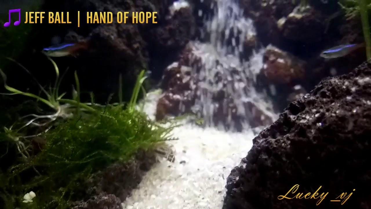 Aquascape air terjun cinta - YouTube