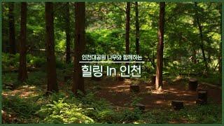 인천대공원 나무와 함께하는 힐링 In 인천