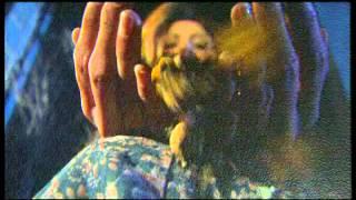 Yavuz Bingöl - Baharım Sensin