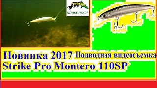 Новинка 2017р Strike Pro Montero 110SP - Підводні відео зйомки №2